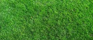 Zwischenbilanz auf dem Rasen: Fußball-WM in Südafrika